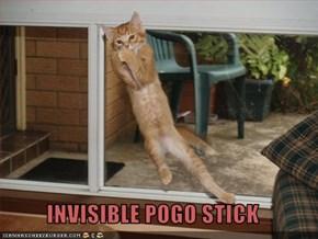 INVISIBLE POGO STICK