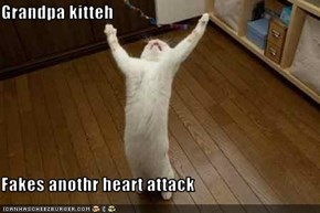 Grandpa kitteh  Fakes anothr heart attack