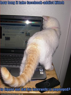 how long it take facebook-addict kitteh  to figure out dat hiz interwebz iz unpluged?