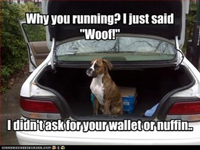 "Why you running? I just said ""Woof!"""