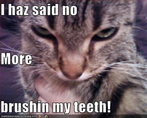 I haz said no More brushin my teeth!