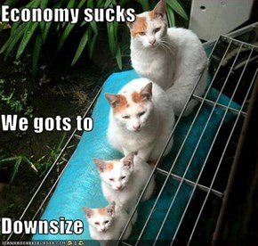 Economy sucks We gots to Downsize