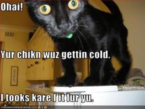 Ohai! Yur chikn wuz gettin cold. I tooks kare f it fur yu.
