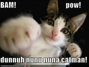 BAM!                                  pow!  dunnuh nunu nuna catman!