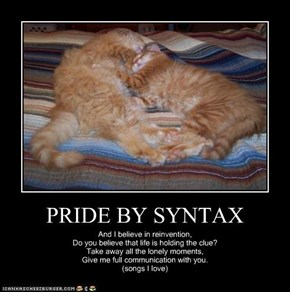 PRIDE BY SYNTAX
