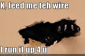 K, feed me teh wire  I run it up 4 u