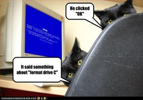 """It said something about """"format drive C"""""""