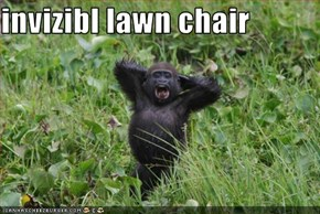 invizibl lawn chair