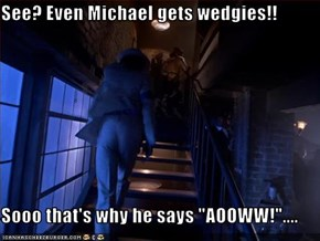 "See? Even Michael gets wedgies!!  Sooo that's why he says ""AOOWW!""...."