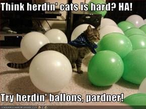 Think herdin' cats is hard? HA!  Try herdin' ballons, pardner!