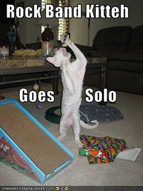 Rock Band Kitteh Goes         Solo