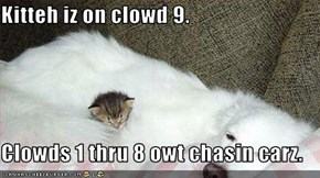 Kitteh iz on clowd 9.  Clowds 1 thru 8 owt chasin carz.
