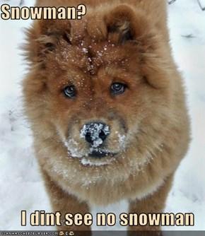 Snowman?  I dint see no snowman