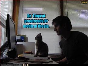 Dr. Tinycat proofreads Ur medical thesis.