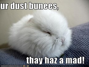 ur dust bunees,  thay haz a mad!