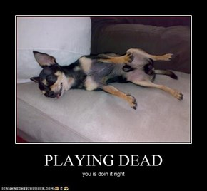 PLAYING DEAD