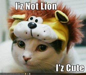 I'z Not Lion                                I'z Cute