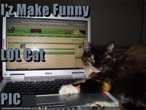 I'z Make Funny LOL Cat PIC