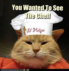 Cheezburger Cat