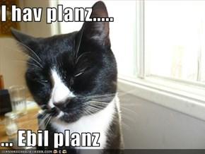 I hav planz.....  ... Ebil planz