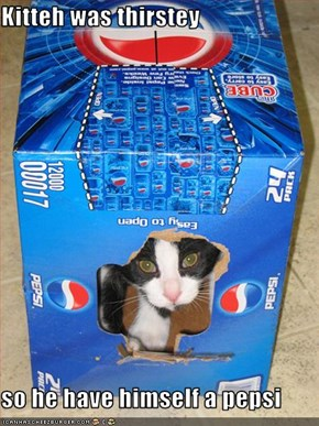 Kitteh was thirstey  so he have himself a pepsi