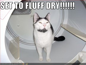 SET TO FLUFF DRY!!!!!!
