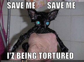 SAVE ME       SAVE ME      I'Z BEING TORTURED