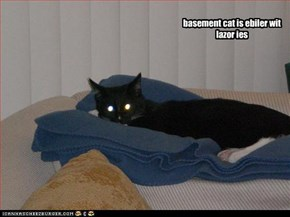 basement cat is ebiler wit lazor ies