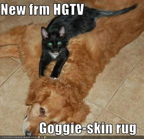 New frm HGTV  Goggie-skin rug