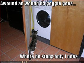 Awound an wound da goggie goes...  Where he stops only i noes...