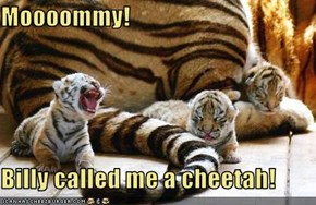 Moooommy!  Billy called me a cheetah!