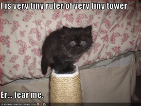 I is very tiny ruler of very tiny tower  Er... fear me.