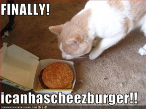 FINALLY!  icanhascheezburger!!
