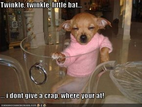 Twinkle, twinkle, little bat...  ... i dont give a crap, where your at!