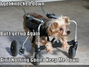 I get knocked down But I get up Again Ain't Nothing Gonna Keep Me Down