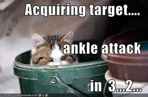 Acquiring target.... ankle attack in  3...2...