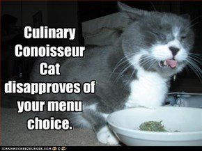 Culinary Conoisseur Cat disapproves of your menu choice.