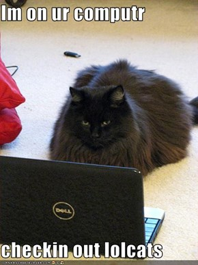 Im on ur computr   checkin out lolcats