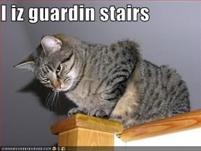 I iz guardin stairs