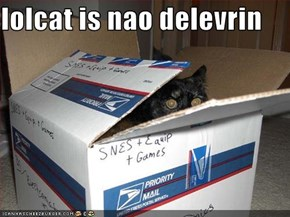 lolcat is nao delevrin