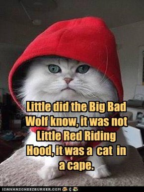 Little did the Big Bad Wolf know, it was not Little Red Riding Hood, it was a  cat  in a cape.