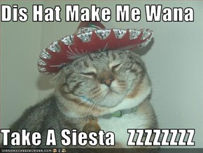 Dis Hat Make Me Wana  Take A Siesta   ZZZZZZZZ