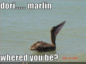 dori...... marlin  whered you be?