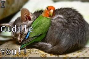 I Cuddle You!!