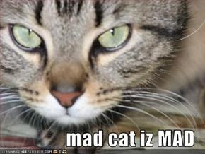 mad cat iz MAD