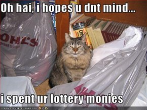 Oh hai, i hopes u dnt mind...  i spent ur lottery monies