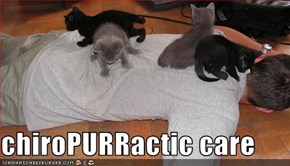 chiroPURRactic care