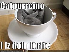 Catpurrcino  I iz doin it rite