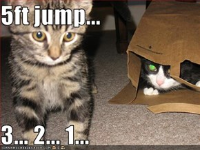 5ft jump...   3... 2... 1...