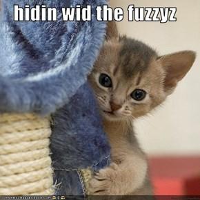 hidin wid the fuzzyz
